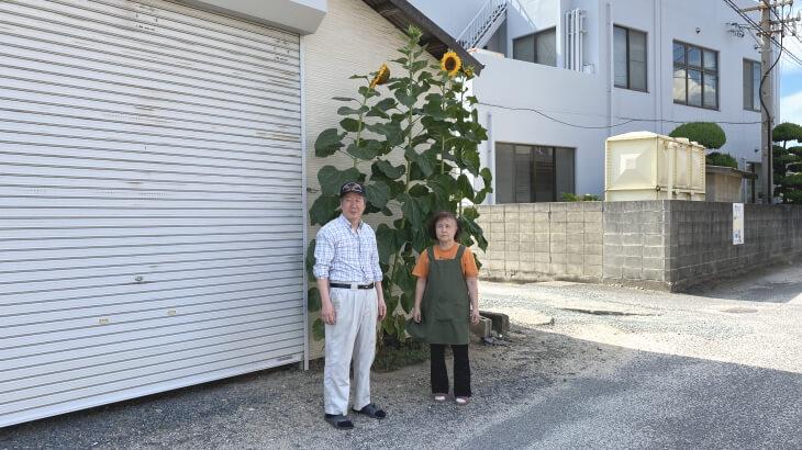古賀市立小野小学校から届いた種から花が咲きました。
